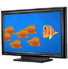 50 inch disply with outstanding picture for, computer presentations, dvd movies and with use of a vhs tv turner a great TV